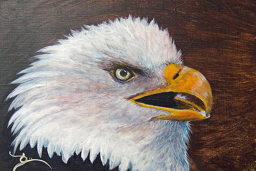 Dee Carpenter - Eagle Study