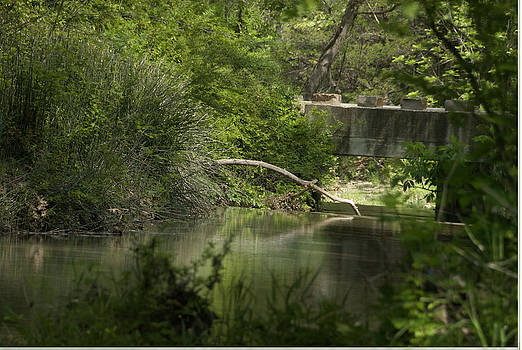 Early Spring Creek by Cindy Rubin