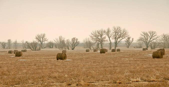 James Steele - Earlying Morning Hay Bails