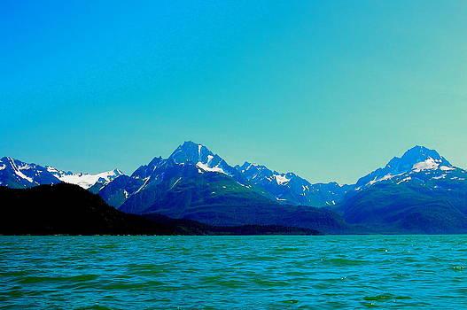 East Arm Glacier Bay by Judy Barrera