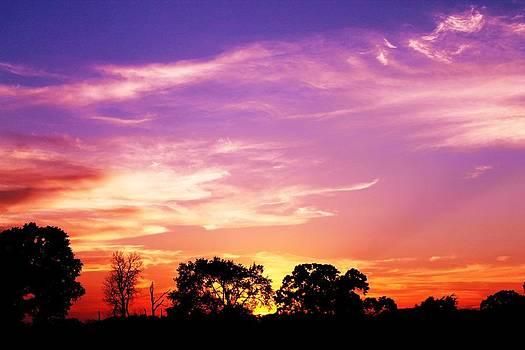 East Texas Sunset by Lorri Crossno