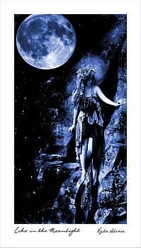 Echo In The Moonlight by Nyla Alisia