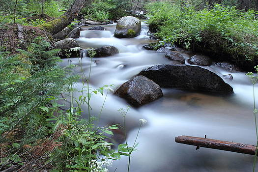 Echo River by Mike Kim