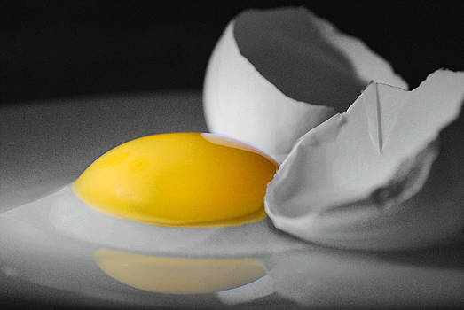 Egg and Black and White by Jeffrey Platt