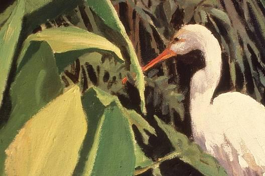 Egret Fishing by Warren Ballard