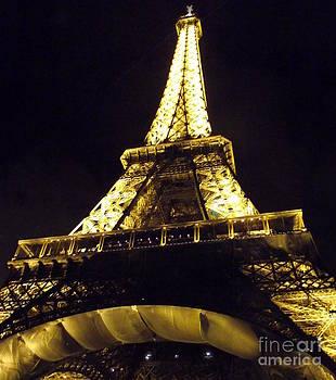 Shawna Gibson - Eiffel tower at night III