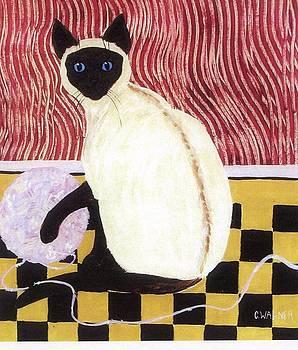 Einstein the Cat by Carol Ann Wagner