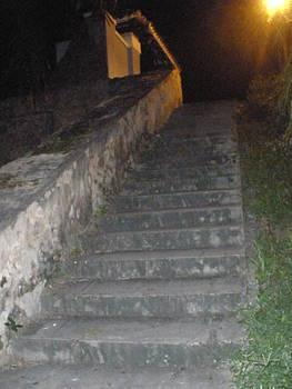 El Morro Trail Steps by Maria Medina