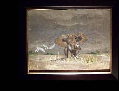 Elephant Before Storm by Rachel Bodak