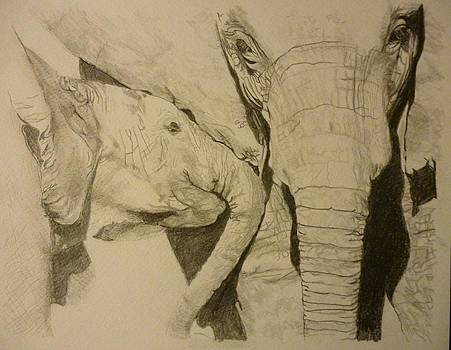 Elephant Calm and Mommy 9 x 12 inch Drawing by Pigatopia by Shannon Ivins