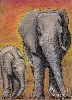 Elephant Mother and calf  by Jamey Balester