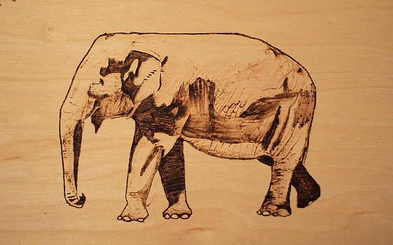 Elephant Pyrograph by Jeremy Cardenas