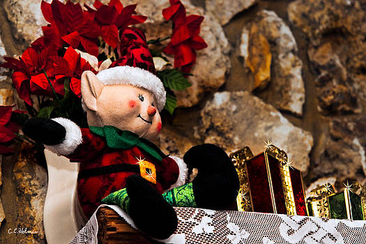Christopher Holmes - Elf On Shelf