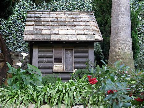 Elfin House 1 by Julia Jones