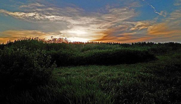 Emerald Twilight by Seth Shotwell