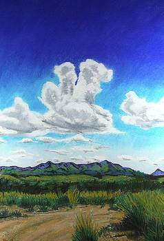 Empire Ranch by Drusilla Montemayor