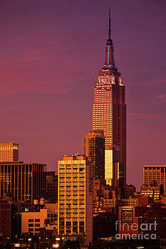 Empire State Building at Sunset by Archana Doddi