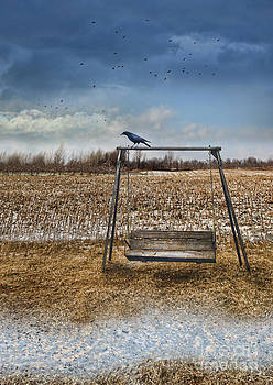 Sandra Cunningham - Empty swing after first snow