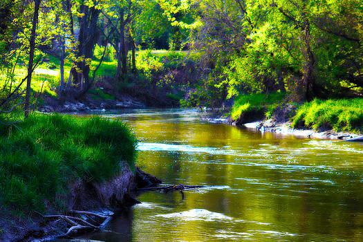 Rebecca Frank - Enchanted River