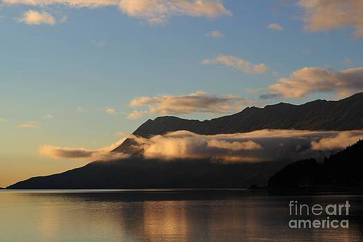 End of Day at Turnagain Arm by Theresa Willingham