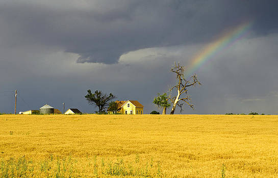 James Steele - End Of The Rainbow