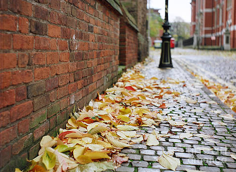 English Autumn Cobblestones by David Dunne