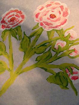 English Rose by Amy Bradley