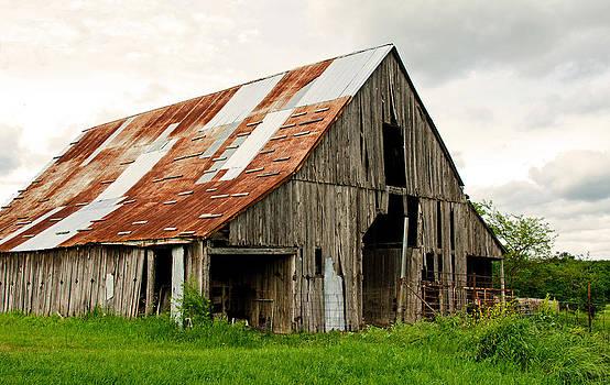 Enormous Barn by Lisa Moore