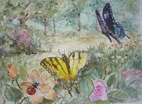Enter the Garden by Dorothy Herron