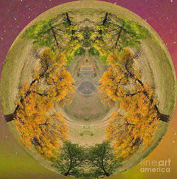 Enter The Universe  by Whispering Feather Gallery