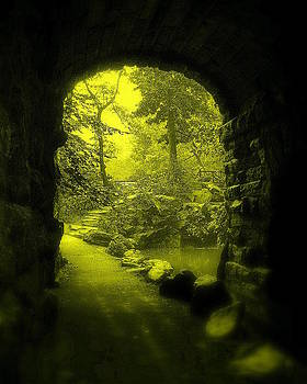 Entrance to Fairyland by Maria Scarfone