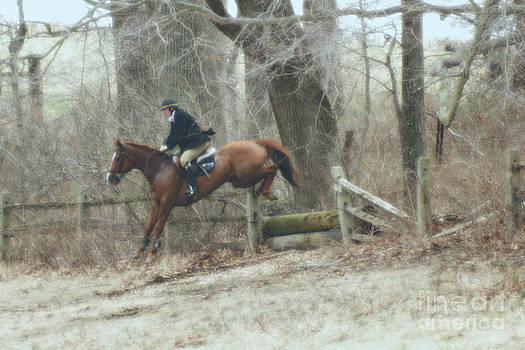 Equestrian Jump by Maria Varnalis
