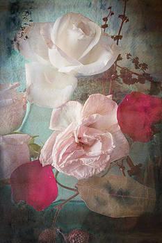 Ermione Roses by Antonia and Fabio Duealberi