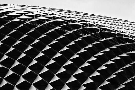 Esplanade Theatres Singapore by Laszlo Rekasi