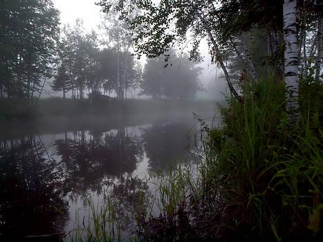 Etang dans la brume du matin by Yves Pelletier