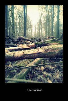 European Wood 1 by Erik Te Kamp