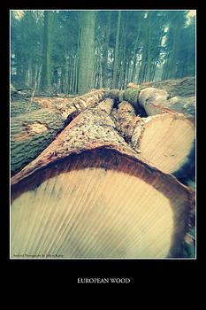 European Wood 2 by Erik Te Kamp