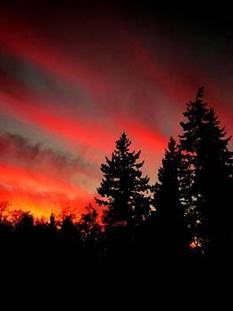 Kevin D Davis - Evening Glow