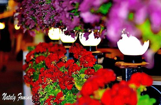 Evening Kiev by Nataly Fomina