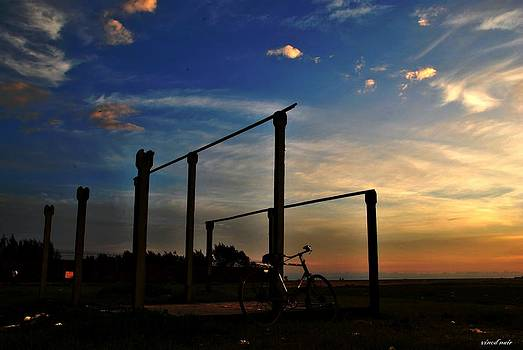 Evening Skies by Vinod Nair