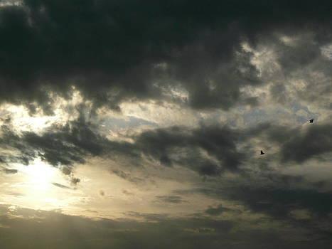 evening Sky by AlT