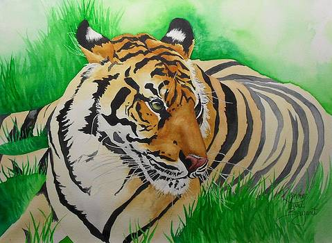 Eye of the Tigress by Lynne Hurd Bryant