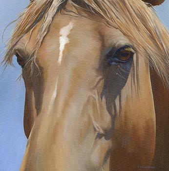 Eye Shadows by Alecia Underhill