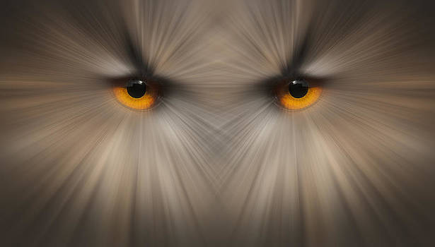 Eyes of a Killer by Andy Astbury