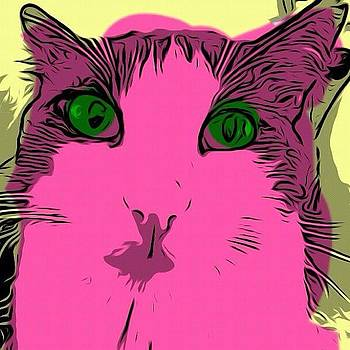 Ezra The Cat, Warhol-style #warhol #cat by Michael Witzel