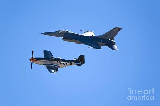 Daniel  Knighton - F-16 and Mustang