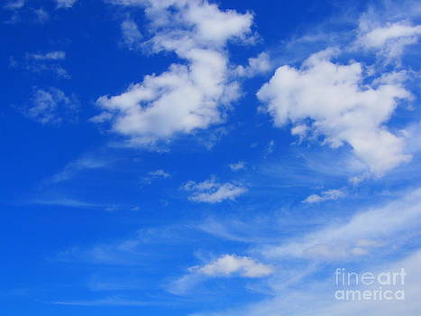 Face in the Clouds by Charmaine Lundy