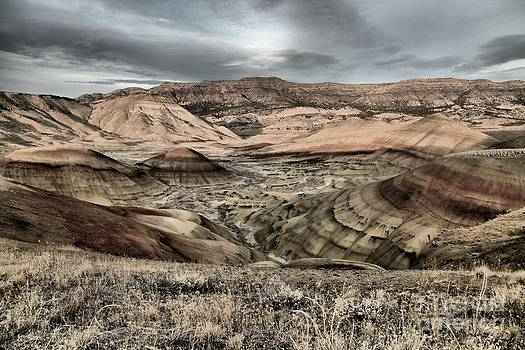 Adam Jewell - Faded Painted Hills