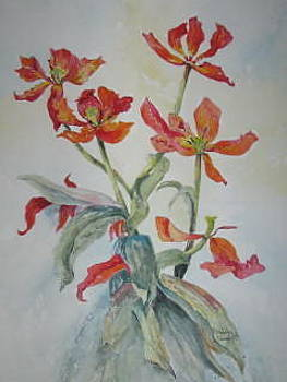 Fading Tulips by Marilyn  Clement