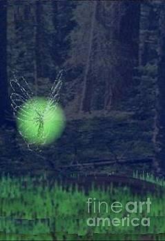 Fairy land by Les DeMartin